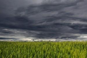 clouds-194840_640